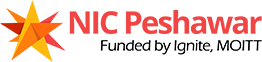 National Incubation Center Peshawar Logo